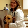 Animal Clinic at Thorndale
