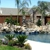 Lion Pools