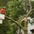 Arbortech Tree Care