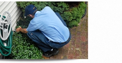 Alliance Pest Control Inc - Lake Worth, FL