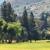 Rancho San Diego Community Network