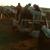 Steers Towing