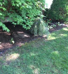 B W Landscaping Inc Shirley
