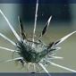 Stop A Crack Windshield Repair - Oklahoma City, OK