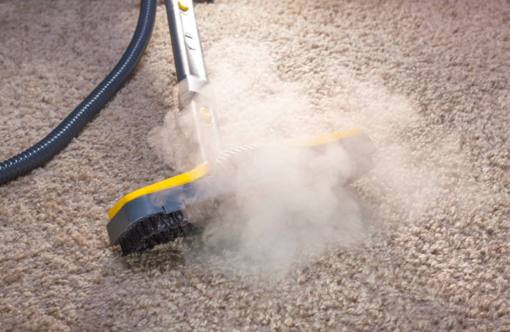 Cleantec Carpet Cleaning