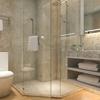 Danville Glass Shower & Windows