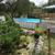 Angelfish Swim School