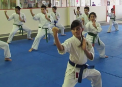 Goju Ryu Karate Do Mesquite - Mesquite, TX