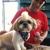 Love My Dog Pet Resort and Spa of Merrick NY