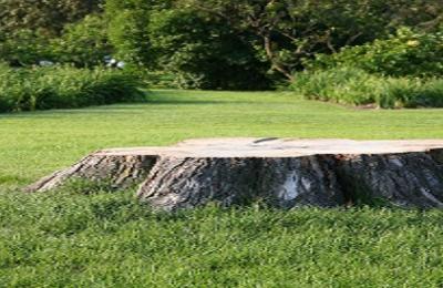 Midwest Tree Service - Ava, IL