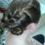 A.Bella Hair Design & Boutique