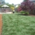 Better Lawns and Gardens