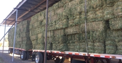UVX Hay Sales, LLC. - Cottonwood, AZ