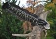 Wildcat Taxidermy - Boyce, VA