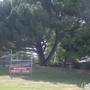 Willow Pass Community Ctr