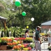 Green Thumb Nursery & Landscaping