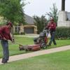 Professional Landscape & Maintenance Work