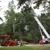 Bills Tree Service