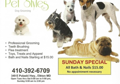 Pet Styles 349 E Pulaski Hwy, Elkton, MD 21921 - YP com