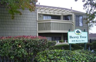 Berry Tree Apartments - Hayward, CA