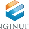 Enginuity Consulting Engineers LLC