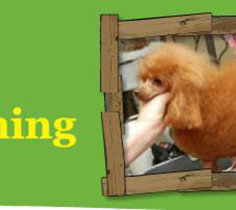 Annie's Grooming Tails - Surfside Beach, SC