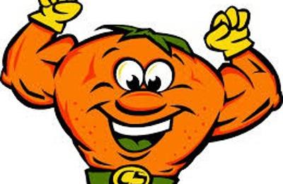 Citrus Solution Carpet Cleaning 1801 Highway 39 Chelsea Al