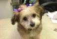Dog Gone Beautiful - Lubbock, TX