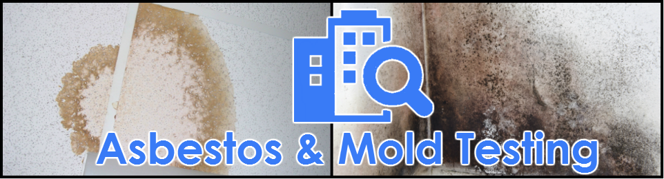 Asbestos and Mold testing in Miami