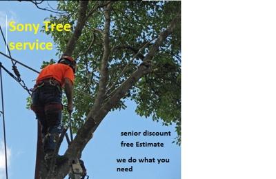 sony tree service
