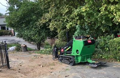 San Bernardino Tree Services - Devore Hghts, CA