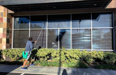 Dazzling Window Cleaning