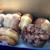 Daily Donut