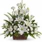 America's Florist Sympathy Designs