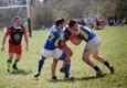 St. Louis Royals Rugby RFC - Saint Louis, MO