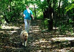 Best Friends Pet Care - Carmel, IN