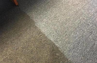 Zerorez Carpet Cleaning Columbia Sc Two Birds Home