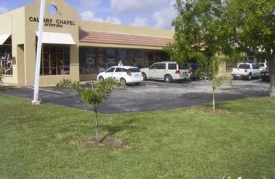 Matthew M Segal DMD - Miami, FL