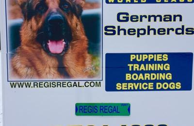 Regis Regal German Shepherds - Spring Grove, IL