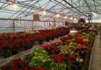 Mary's Greenhouse - Gurnee, IL