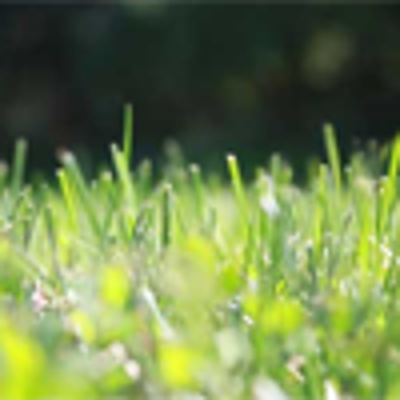 Greenskeeper Lawn Care, Inc. - Bridgeport, CT