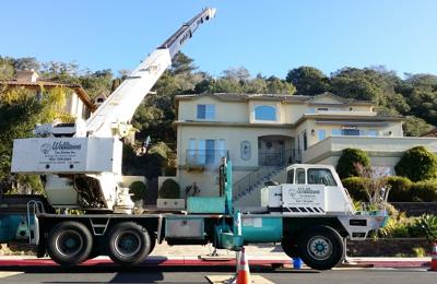 Williams Tree Service Inc - Watsonville, CA