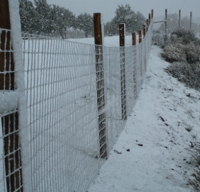 Woven-Wire-on-Un-Cut-Wood-Posts-in-Snow