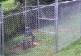 Roark Fencing - Georgetown, KY