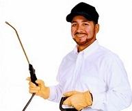 pest control services3