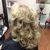 118th Avenue Salon by Sandra Sellers