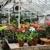 Michler's Florist, Greenhouses & Garden Design