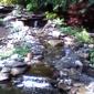 Water Garden & Koi Co - Bayville, NJ