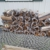 Edgewater Stone & Garden Supply Inc