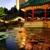 Ming Court - Innovative Oriental Cuisine